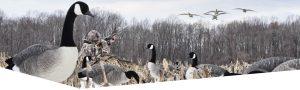 Maryland Waterfowl Hunts